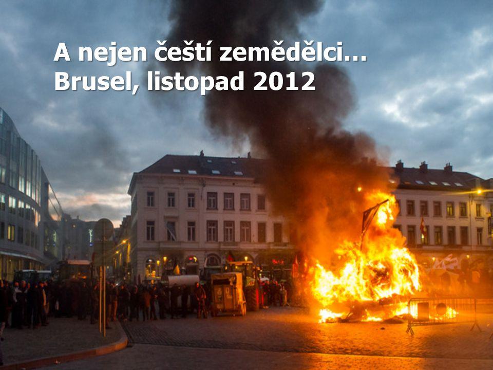 A nejen čeští zemědělci… Brusel, listopad 2012