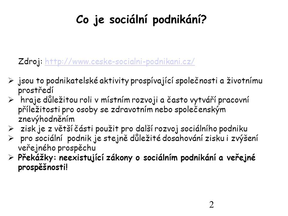 2 Co je sociální podnikání.