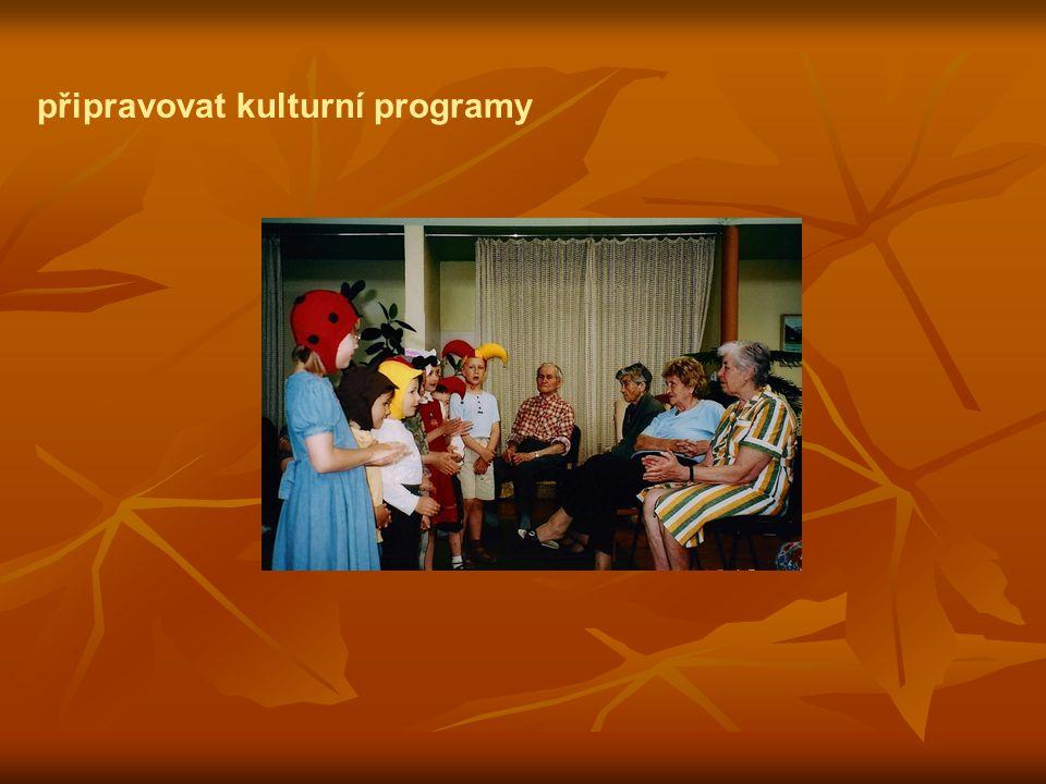 připravovat kulturní programy