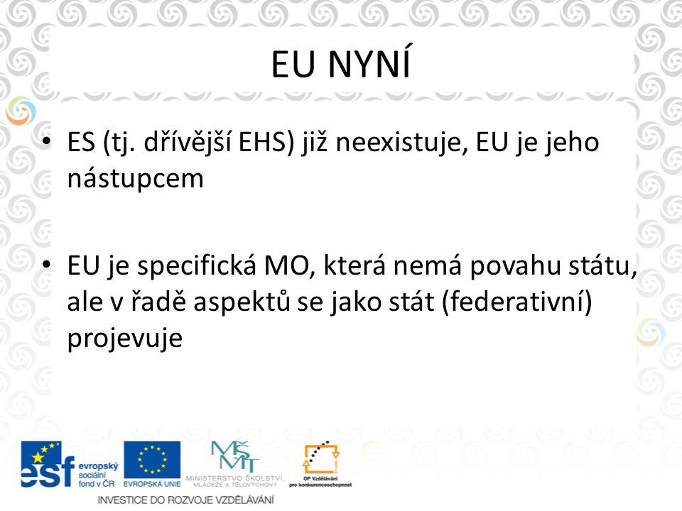 EU NYNÍ ES (tj. dřívější EHS) již neexistuje, EU je jeho nástupcem EU je specifická MO, která nemá povahu státu, ale v řadě aspektů se jako stát (fede