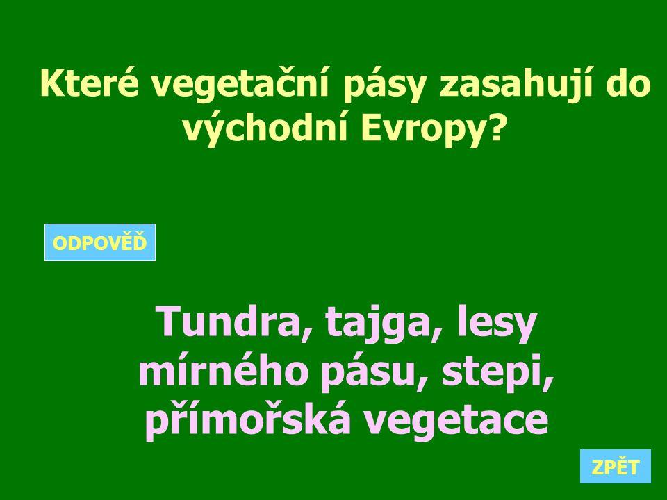 Které vegetační pásy zasahují do východní Evropy? Tundra, tajga, lesy mírného pásu, stepi, přímořská vegetace ZPĚT ODPOVĚĎ