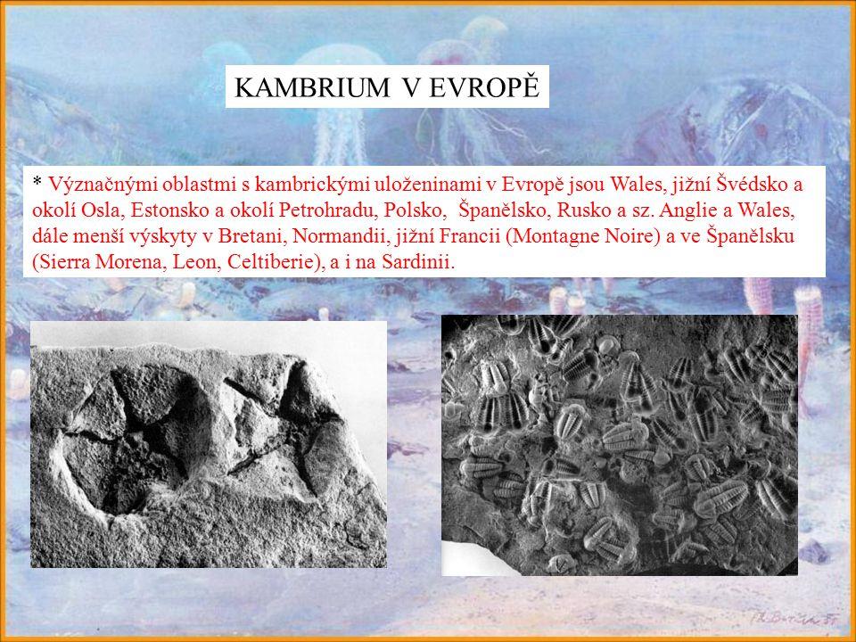 KAMBRIUM V EVROPĚ * Význačnými oblastmi s kambrickými uloženinami v Evropě jsou Wales, jižní Švédsko a okolí Osla, Estonsko a okolí Petrohradu, Polsko, Španělsko, Rusko a sz.