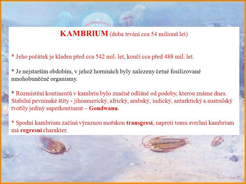 KAMBRIUM (doba trvání cca 54 milionů let) * Jeho počátek je kladen před cca 542 mil.