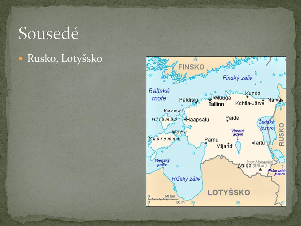 Jde o přímořský stát, jehož hranici tvoří z větší části Baltské moře; 80 km široký Finský záliv na severu je odděluje od Finska.