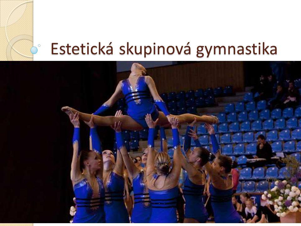 Historie Vznik – Finsko Rozvoj - severní Evropa (Estonsko, Švédsko, Dánsko...) 1996 – první mezinárodní závody 2000 – první MS Finsko MS – 3 české týmy