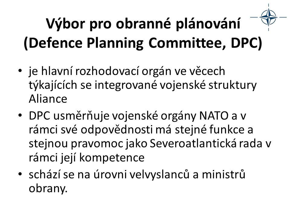 Skupina pro jaderné plánování (Nuclear Planning Group, NPG) je hlavní rozhodovací orgán v oblasti jaderné politiky NATO zabývá se širokým okruhem otázek jaderné politiky včetně otázek rozmístění, technického zabezpečení, bezpečnosti jaderných zbraní, ochrany před nimi a možnosti přežití jejich použití včetně otázek souvisejících se šířením jaderných zbraní schází se na úrovni velvyslanců a ministrů obrany.