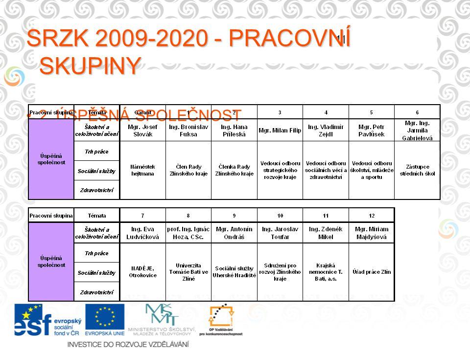 11 SRZK 2009-2020 - PRACOVNÍ SKUPINY 2. ÚSPĚŠNÁ SPOLEČNOST