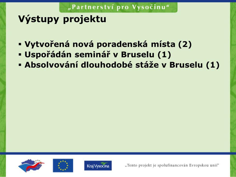 Výstupy projektu  Vytvořená nová poradenská místa (2)  Uspořádán seminář v Bruselu (1)  Absolvování dlouhodobé stáže v Bruselu (1)