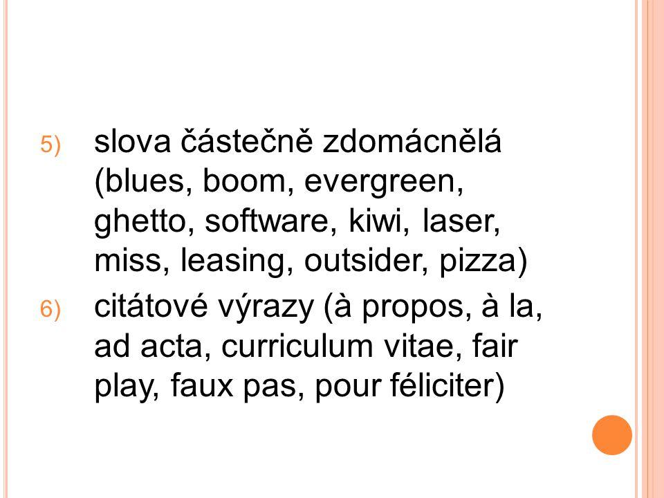 5) slova částečně zdomácnělá (blues, boom, evergreen, ghetto, software, kiwi, laser, miss, leasing, outsider, pizza) 6) citátové výrazy (à propos, à l
