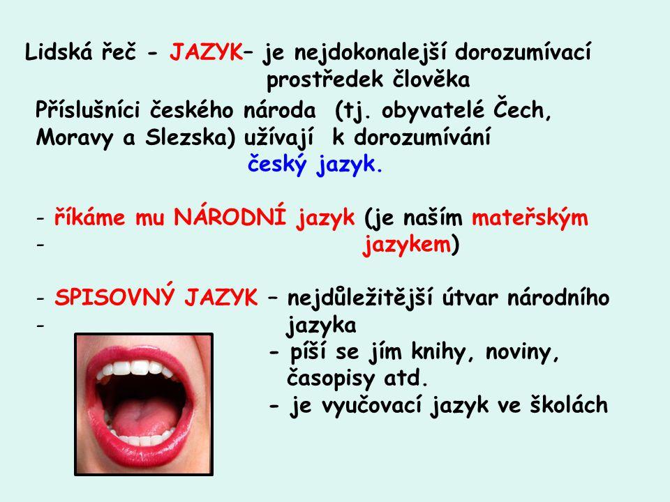 Lidská řeč - JAZYK– je nejdokonalejší dorozumívací prostředek člověka Příslušníci českého národa (tj. obyvatelé Čech, Moravy a Slezska) užívají k doro