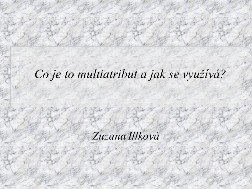 Co je to multiatribut a jak se využívá? Zuzana Illková