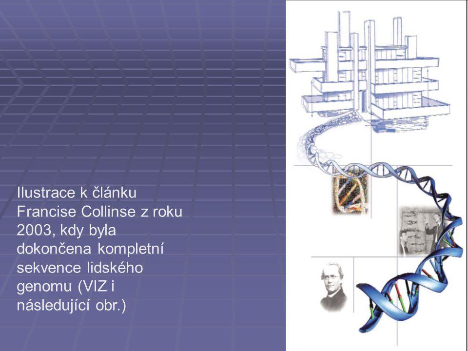 Ilustrace k článku Francise Collinse z roku 2003, kdy byla dokončena kompletní sekvence lidského genomu (VIZ i následující obr.)