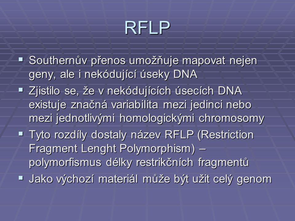 RFLP  Southernův přenos umožňuje mapovat nejen geny, ale i nekódující úseky DNA  Zjistilo se, že v nekódujících úsecích DNA existuje značná variabilita mezi jedinci nebo mezi jednotlivými homologickými chromosomy  Tyto rozdíly dostaly název RFLP (Restriction Fragment Lenght Polymorphism) – polymorfismus délky restrikčních fragmentů  Jako výchozí materiál může být užit celý genom
