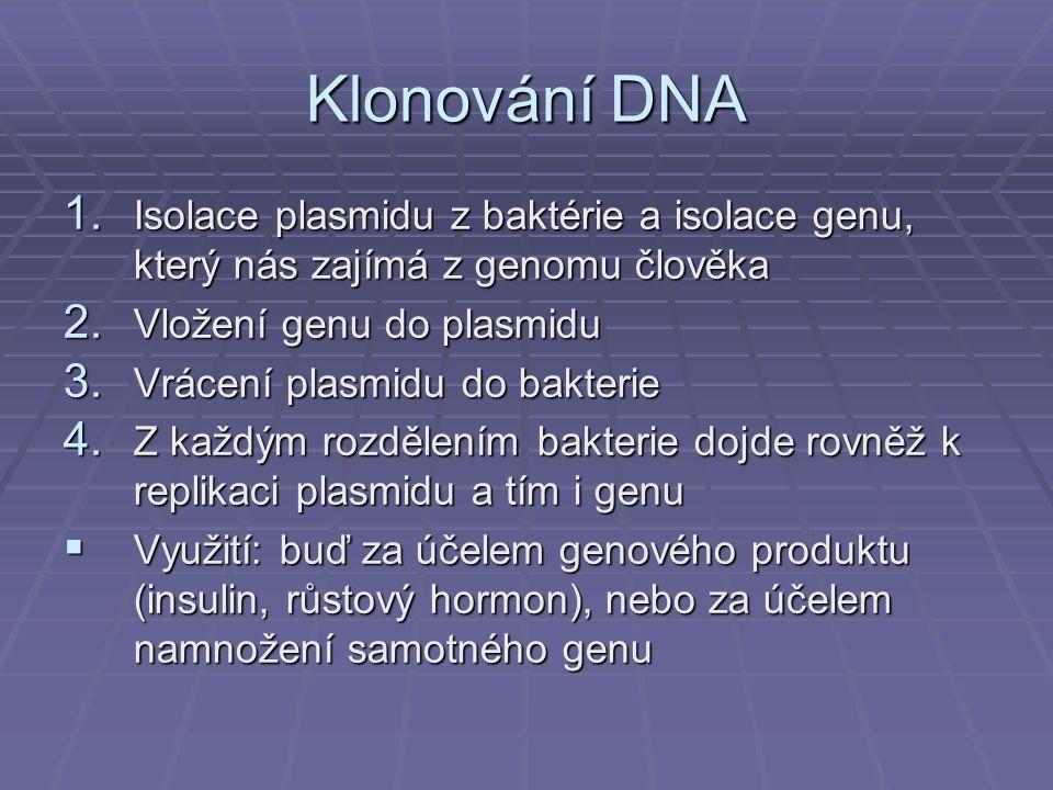 1.Isolace plasmidu z baktérie a isolace genu, který nás zajímá z genomu člověka 2.