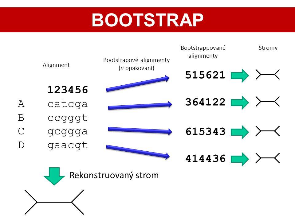 123456 Acatcga Bccgggt Cgcggga Dgaacgt Rekonstruovaný strom 515621 364122 615343 414436 Bootstrapové alignmenty (n opakování) Alignment Bootstrappovan
