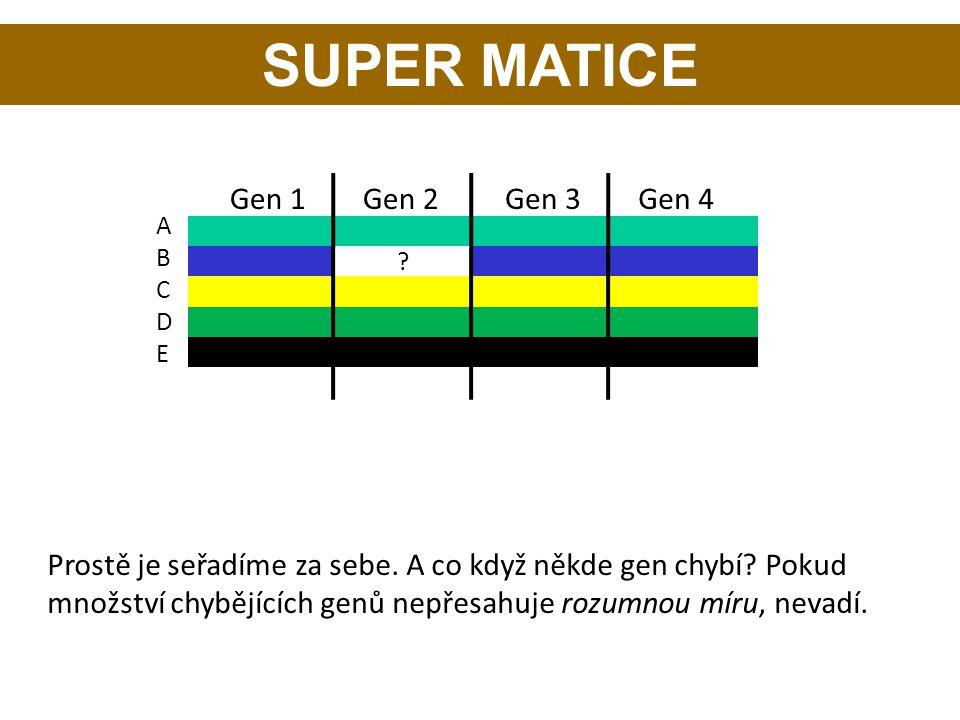 SUPER MATICE ABCDEABCDE Gen 1Gen 2Gen 3Gen 4 ? Prostě je seřadíme za sebe. A co když někde gen chybí? Pokud množství chybějících genů nepřesahuje rozu