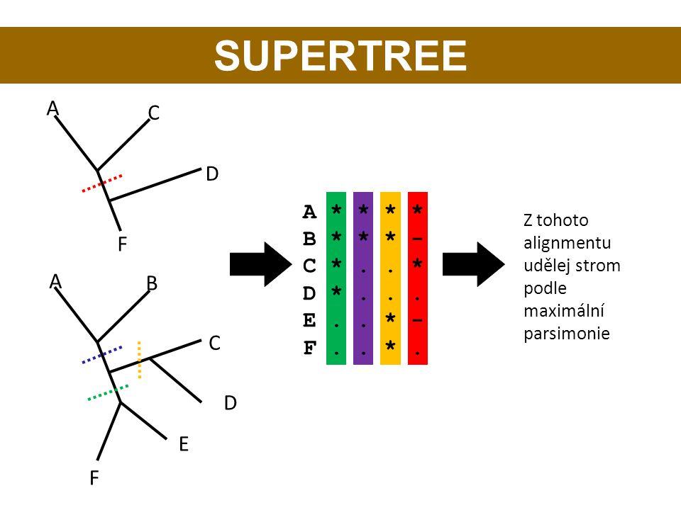 A B C E D F A * * * * B * * * - C *.. * D *... E.. * - F.. *. A C D F Z tohoto alignmentu udělej strom podle maximální parsimonie SUPERTREE