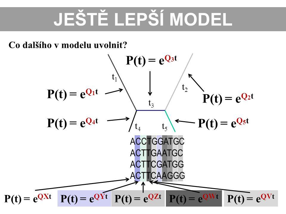 Co dalšího v modelu uvolnit? t1t1 t2t2 t3t3 t4t4 t5t5 JEŠTĚ LEPŠÍ MODEL P(t) = e Q 2 t P(t) = e Q 5 t P(t) = e Q 3 t P(t) = e Q 1 t P(t) = e QXt P(t)