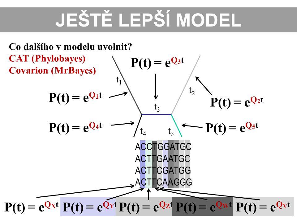 Co dalšího v modelu uvolnit? CAT (Phylobayes) Covarion (MrBayes) t1t1 t2t2 t3t3 t4t4 t5t5 P(t) = e Q 2 t P(t) = e Q 5 t P(t) = e Q 3 t P(t) = e Q 1 t
