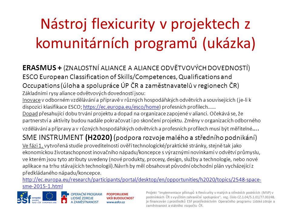 Nástroj flexicurity v projektech z komunitárních programů (ukázka) Projekt Implementace přístupů k flexicurity v malých a středních podnicích (MSP) v podmínkách ČR s využitím zahraniční spolupráce , reg.