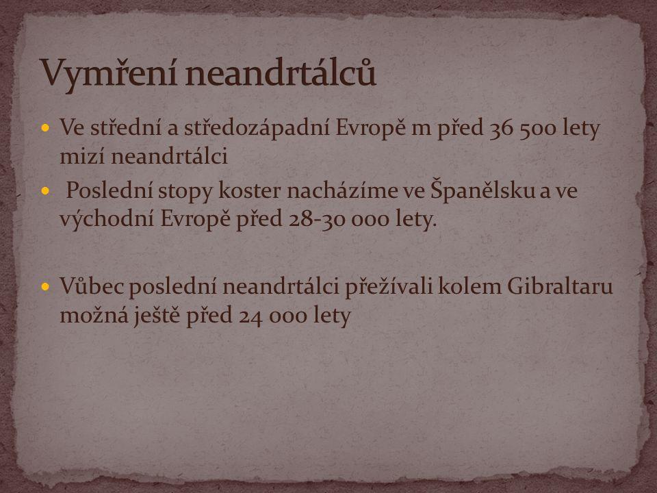 Ve střední a středozápadní Evropě m před 36 500 lety mizí neandrtálci Poslední stopy koster nacházíme ve Španělsku a ve východní Evropě před 28-30 000 lety.