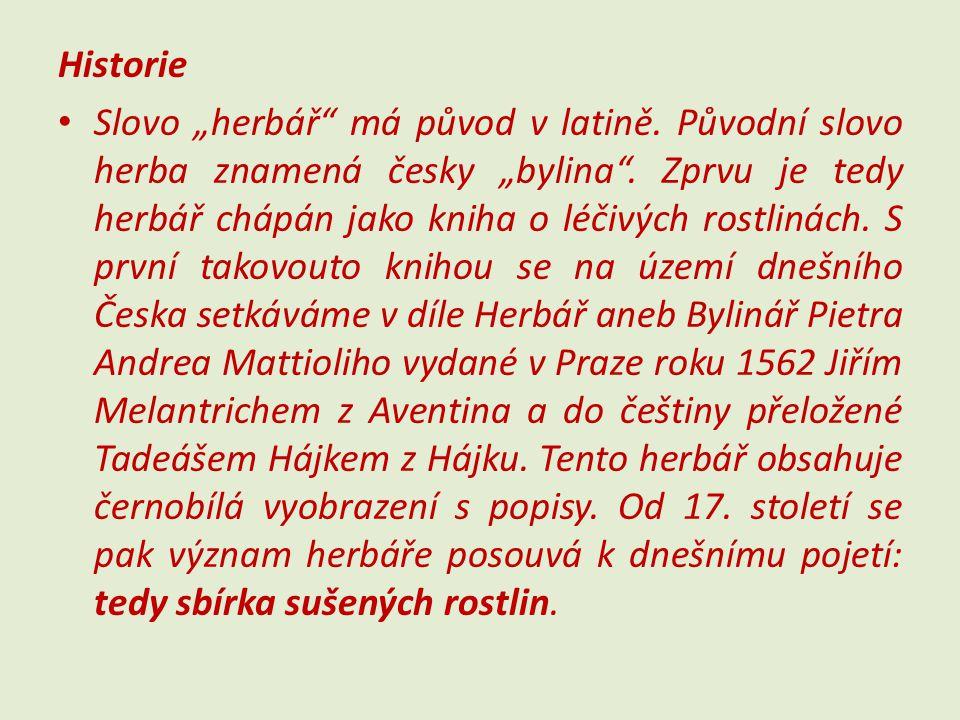 """Historie Slovo """"herbář"""" má původ v latině. Původní slovo herba znamená česky """"bylina"""". Zprvu je tedy herbář chápán jako kniha o léčivých rostlinách. S"""