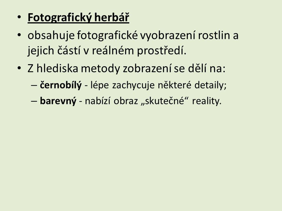 Fotografický herbář obsahuje fotografické vyobrazení rostlin a jejich částí v reálném prostředí. Z hlediska metody zobrazení se dělí na: – černobílý -