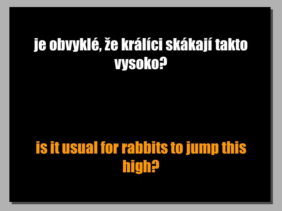je obvyklé, že králíci skákají takto vysoko is it usual for rabbits to jump this high
