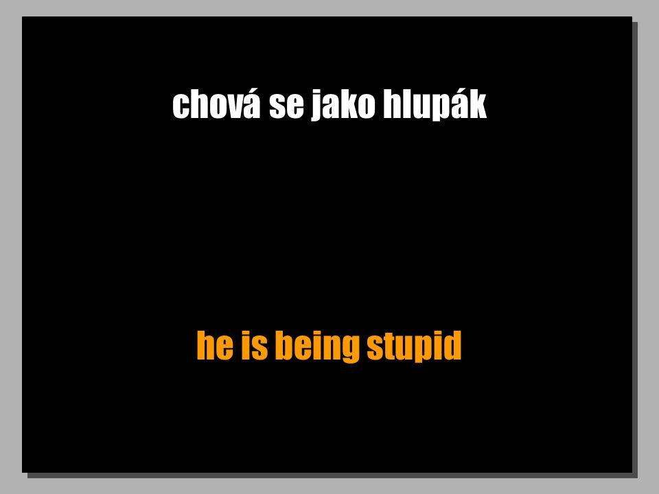 chová se jako hlupák he is being stupid