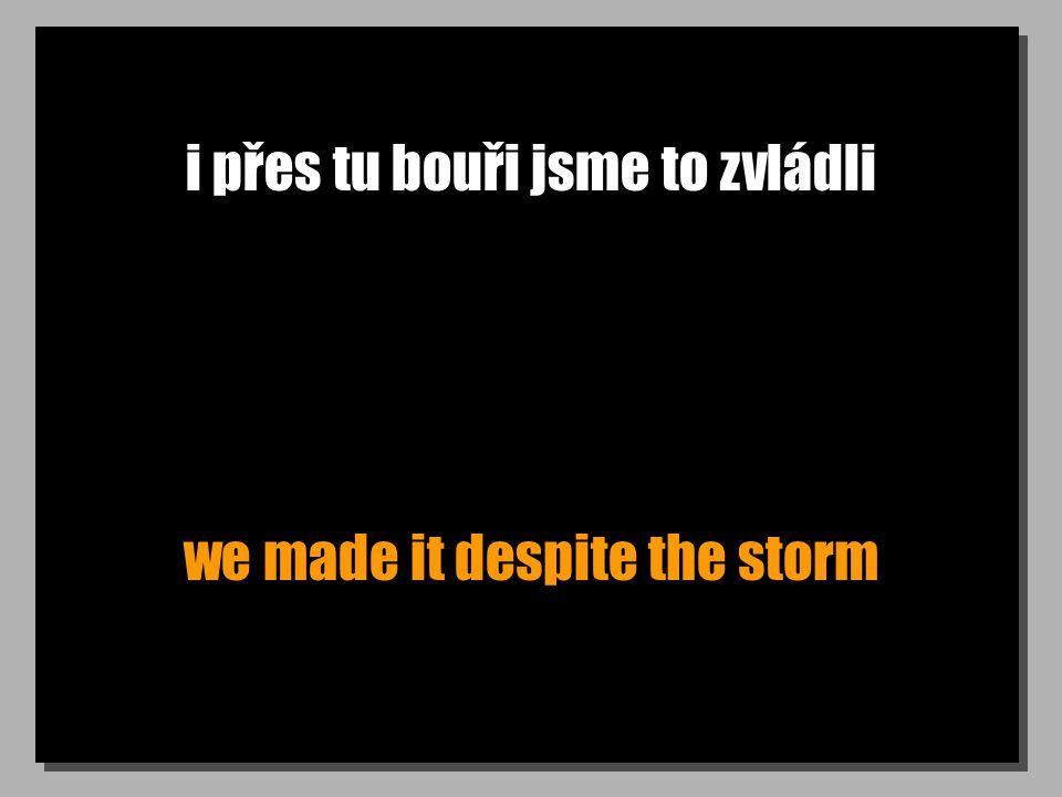 i přes tu bouři jsme to zvládli we made it despite the storm