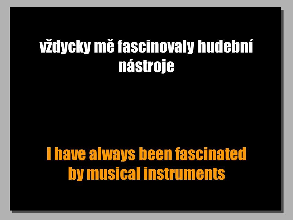 vždycky mě fascinovaly hudební nástroje I have always been fascinated by musical instruments