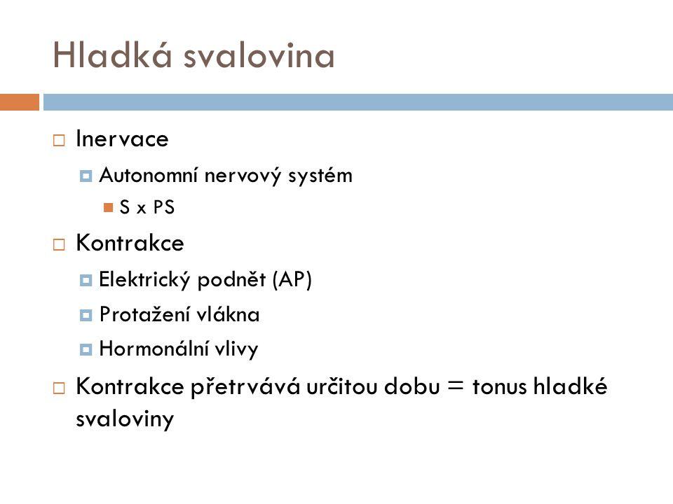 Hladká svalovina  Inervace  Autonomní nervový systém S x PS  Kontrakce  Elektrický podnět (AP)  Protažení vlákna  Hormonální vlivy  Kontrakce přetrvává určitou dobu = tonus hladké svaloviny