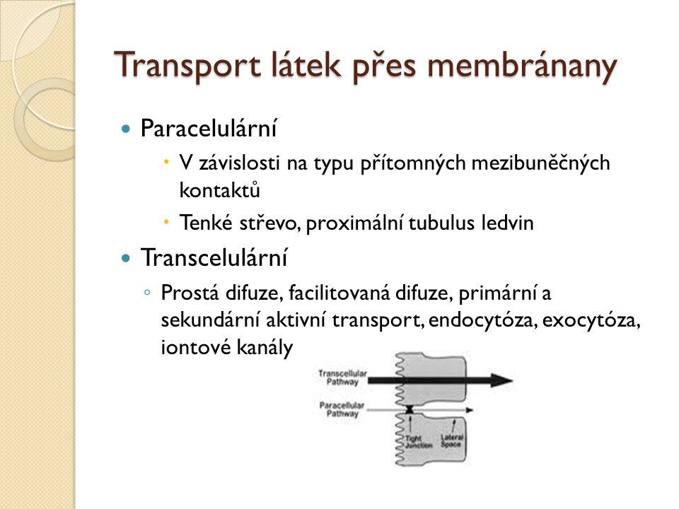 Transport látek přes membránany Paracelulární  V závislosti na typu přítomných mezibuněčných kontaktů  Tenké střevo, proximální tubulus ledvin Trans