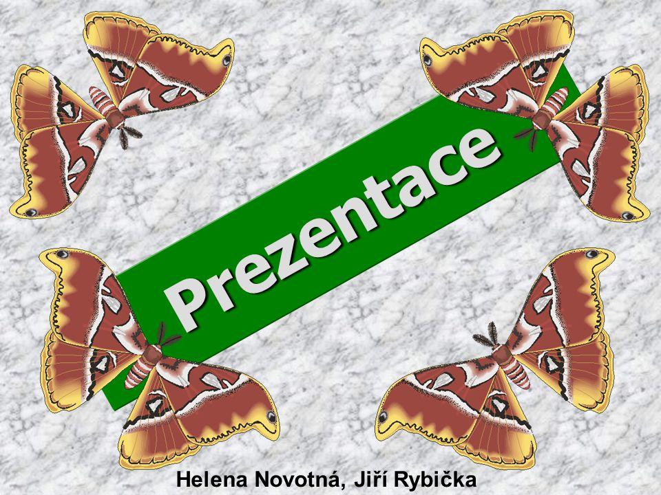 Prezentace Helena Novotná, Jiří Rybička