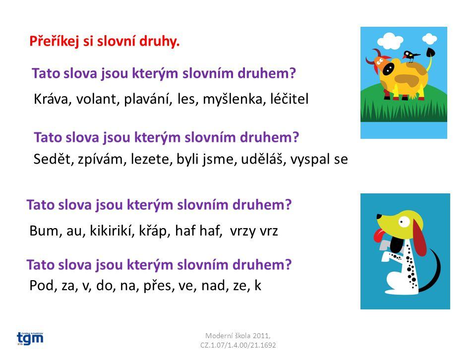 Moderní škola 2011, CZ.1.07/1.4.00/21.1692 Přeříkej si slovní druhy.