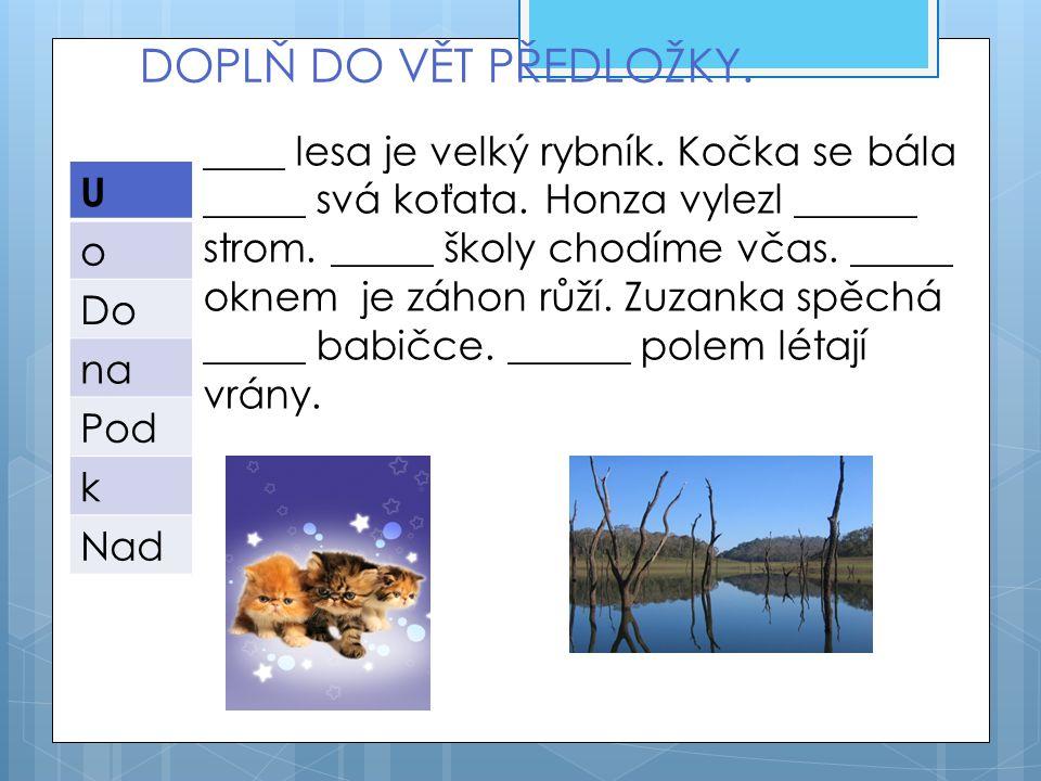 DOPLŇ DO VĚT PŘEDLOŽKY. U o Do na Pod k Nad ____ lesa je velký rybník.