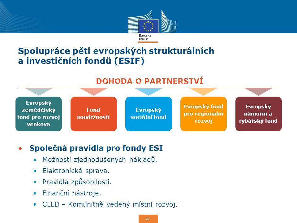18 Spolupráce pěti evropských strukturálních a investičních fondů (ESIF) Společná pravidla pro fondy ESI Možnosti zjednodušených nákladů. Elektronická