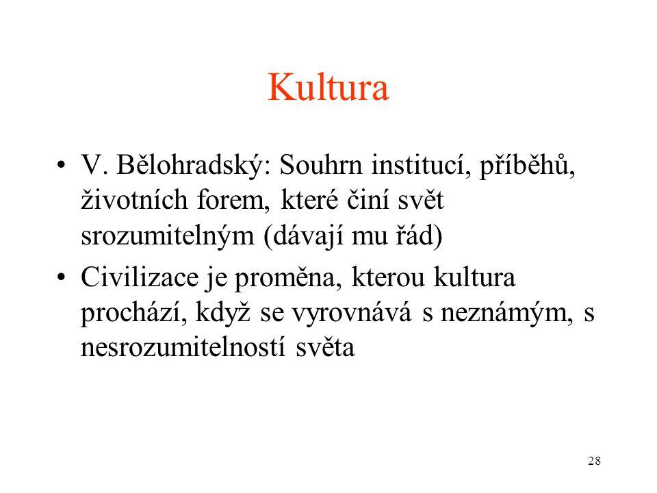 28 Kultura V. Bělohradský: Souhrn institucí, příběhů, životních forem, které činí svět srozumitelným (dávají mu řád) Civilizace je proměna, kterou kul