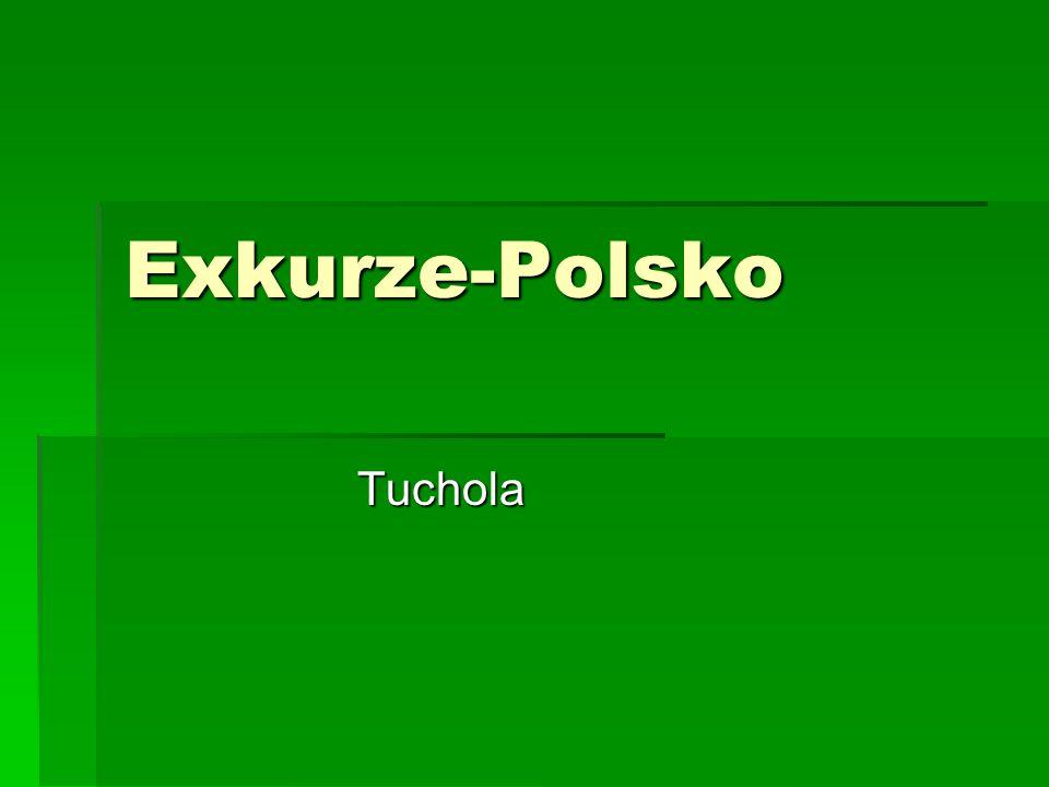 Exkurze-Polsko Tuchola Tuchola