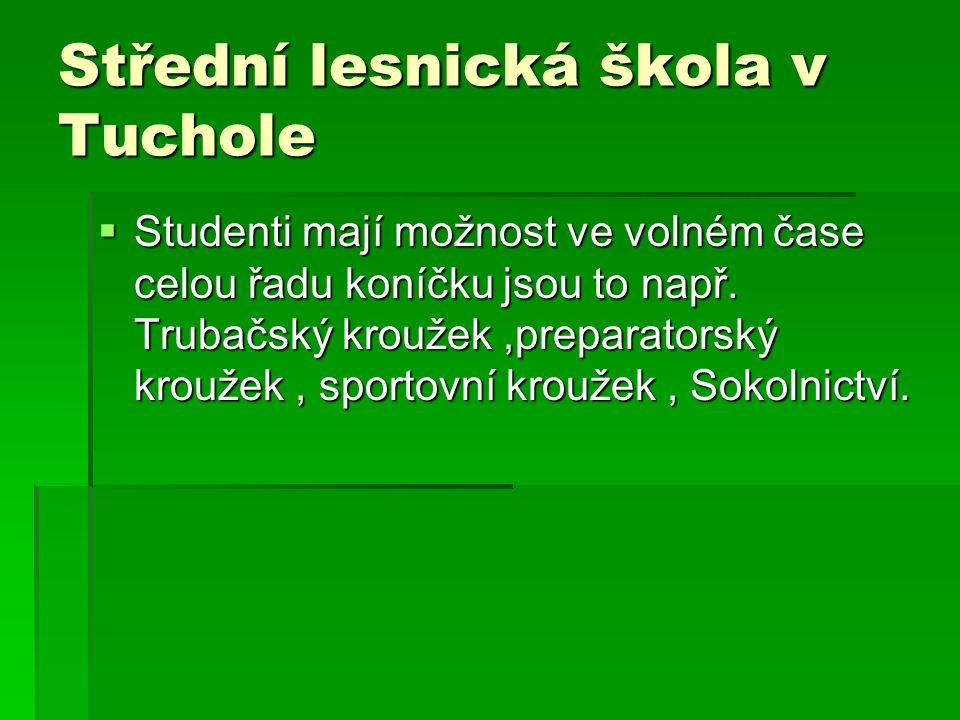 Střední lesnická škola v Tuchole  Studenti mají možnost ve volném čase celou řadu koníčku jsou to např.