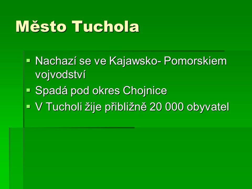 Město Tuchola  Nachazí se ve Kajawsko- Pomorskiem vojvodství  Spadá pod okres Chojnice  V Tucholi žije přibližně 20 000 obyvatel