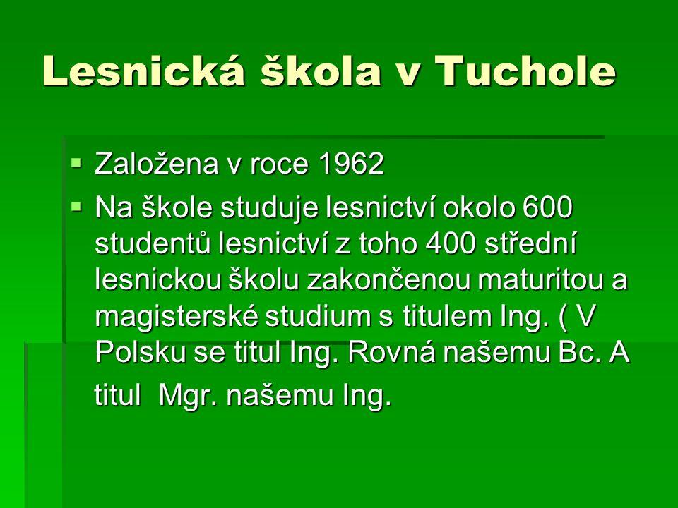 Lesnická škola v Tuchole  Založena v roce 1962  Na škole studuje lesnictví okolo 600 studentů lesnictví z toho 400 střední lesnickou školu zakončenou maturitou a magisterské studium s titulem Ing.