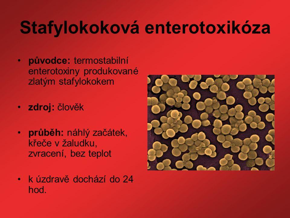 Stafylokoková enterotoxikóza původce: termostabilní enterotoxiny produkované zlatým stafylokokem zdroj: člověk průběh: náhlý začátek, křeče v žaludku,
