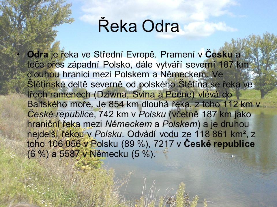 Řeka Odra Odra je řeka ve Střední Evropě. Pramení v Česku a teče přes západní Polsko, dále vytváří severní 187 km dlouhou hranici mezi Polskem a Němec