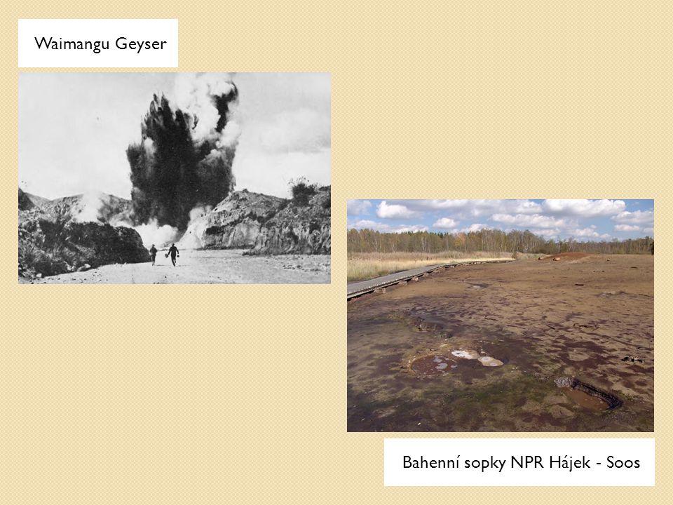 Waimangu Geyser Bahenní sopky NPR Hájek - Soos