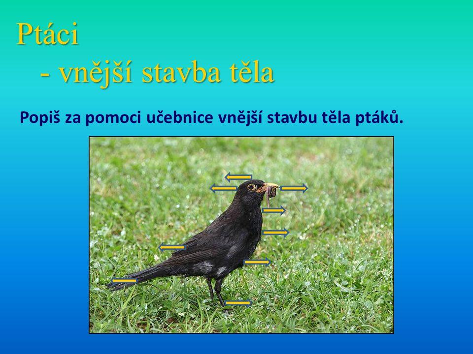 Ptáci - vnější stavba těla Popiš za pomoci učebnice vnější stavbu těla ptáků.