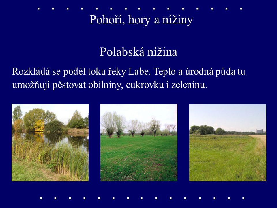 Pohoří, hory a nížiny Polabská nížina Rozkládá se podél toku řeky Labe.