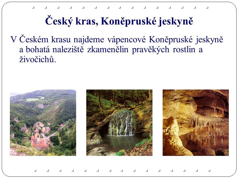 Český kras, Koněpruské jeskyně V Českém krasu najdeme vápencové Koněpruské jeskyně a bohatá naleziště zkamenělin pravěkých rostlin a živočichů.