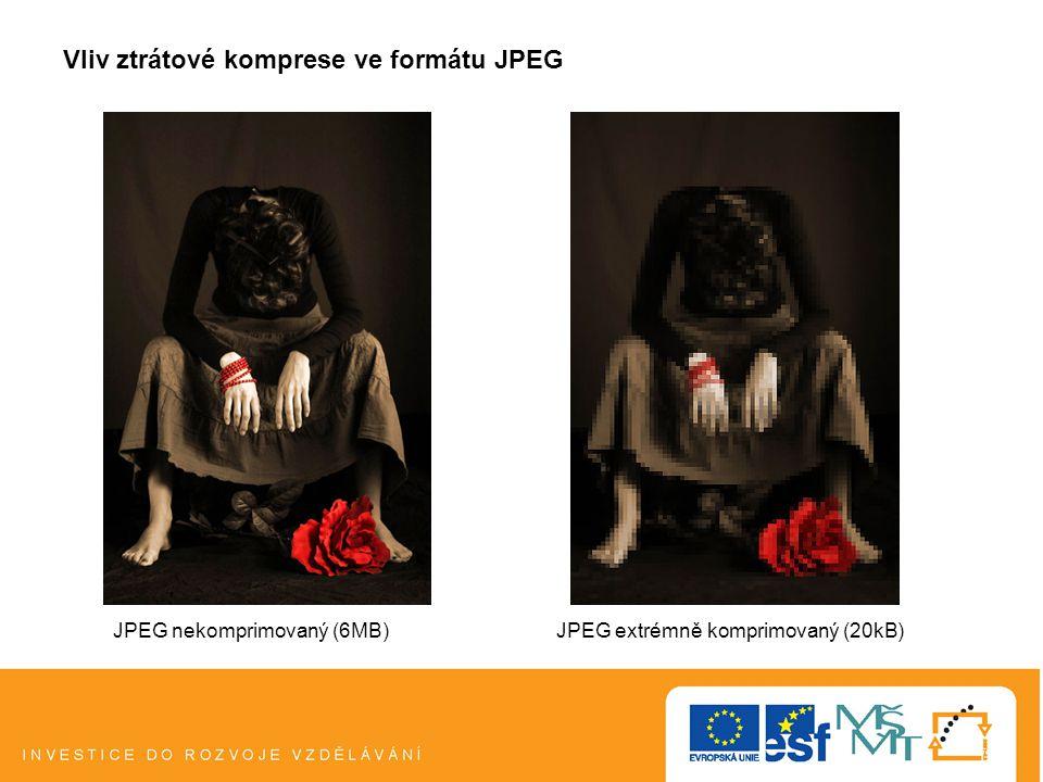 Vliv ztrátové komprese ve formátu JPEG JPEG nekomprimovaný (6MB)JPEG extrémně komprimovaný (20kB)