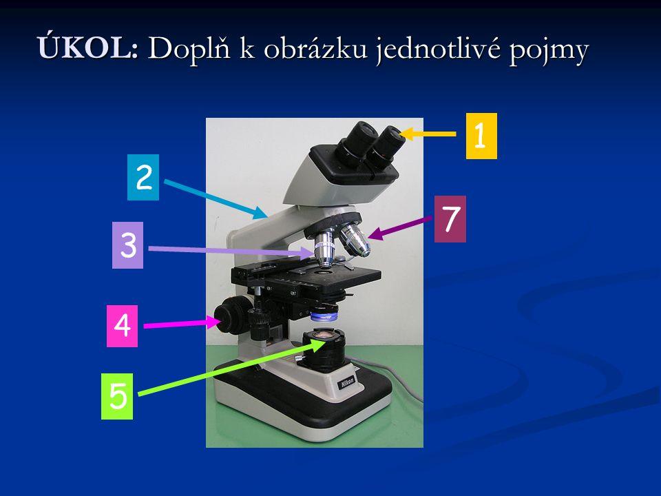 POTŘEBY PRO MIKROSKOPOVÁNÍ Základní potřeby pro mikroskopování jsou: jehla stěrka skalpel nůžky pinzeta skleněná tyčka pipeta
